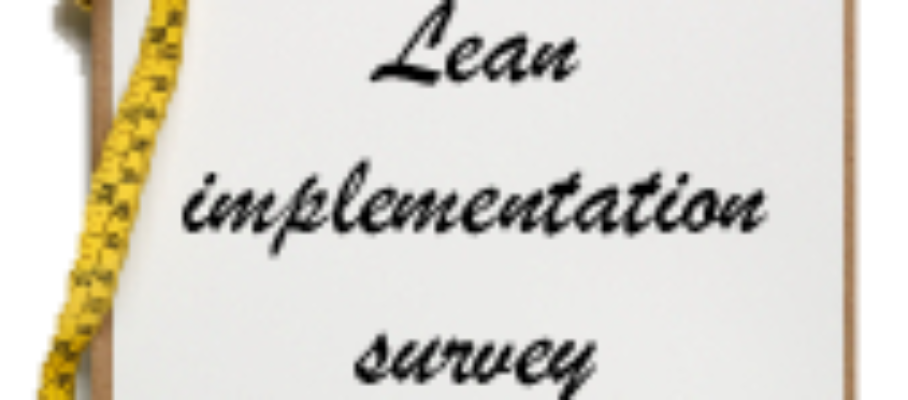 Lean implementation survey
